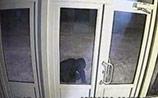 Взрыв в Пензе у здания телекомпании - камеры сняли бомбиста. ВИДЕО