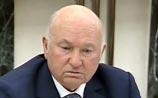 """Лужкова отпустили в отпуск """"подумать"""". Он уверяет, что не ссорил Медведева и Путина"""