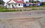 Власти не связывают массовые драки в Ленобласти, хотя сценарии почти совпадают