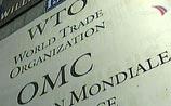 Грузия сняла все преграды на пути России в ВТО, но Москву и это может не устроить