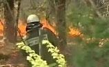 В Туве погибли 9 из 14 парашютистов, тушивших лесной пожар
