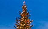 Города Европы отказываются от елок на Рождество: там живут мусульмане, им ни к чему