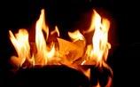 Из-за критики Собянина сотрудники колонии сложили письма Алехиной в ведро и подожгли