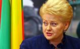 Президент Литвы тоже бойкотирует Олимпиаду в Сочи