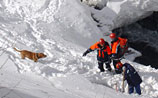"""На сочинском курорте """"Роза Хутор"""" сошла лавина: погибли две горнолыжницы"""