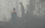 До Москвы добрался смог от пожаров в Тверской области, которые поможет тушить Минобороны