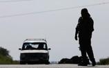 Чеченцы воюют на стороне украинской армии, заявил глава диаспоры в Австрии