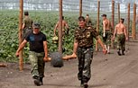 На Западе и в России нашли изъяны в проекте стены между Украиной и РФ