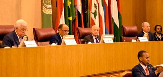 Лига арабских государств попросит Совбез ООН о создании государства Палестина