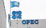 """В ОПЕК предрекают скорый рост нефти, обвиняют в падении цен """"новичков рынка"""""""