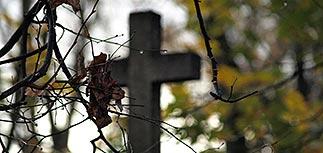 Крымский федеральный округ стал лидером по росту смертности