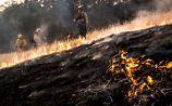 Лесные пожары в Калифорнии охватили 18,5 тыс. га и разрастаются, погиб пожарный