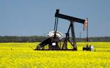 Аналитики предсказали крах финансовой системы России при цене на нефть в 22,5$