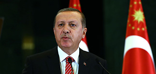 Турция обвинила Россию в создании карликового государства на западе Сирии