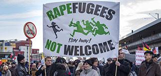 Немецкая полиция получила более 600 жалоб на насилие со стороны мигрантов