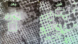 Власти Египет заявили о ликвидации организатора теракта на борту A321