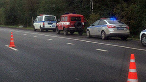 В ДТП с участием пьяного полицейского в Подмосковье погибла семья священника
