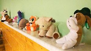 В Москве из приемной семьи забрали 10 детей: Путина просят вмешаться