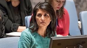 США в СБ ООН призвали оказывать давление не на Сирию, а на Россию