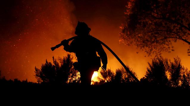 Трамп ввел в Калифорнии режим ЧС из-за пожаров