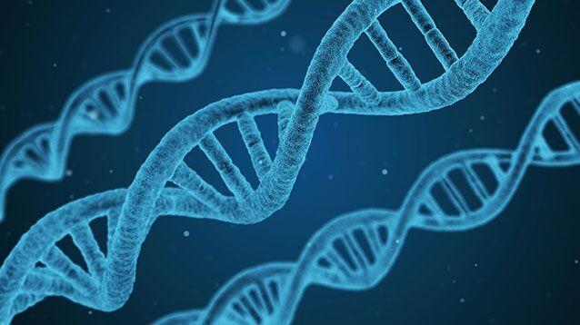 РФ приступает к генетической инженерии человека, животных и растений. Путин подписал указ