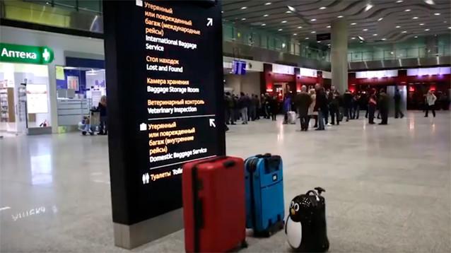 В Петербурге госпитализирован пассажир рейса из КНР с подозрением на коронавирус