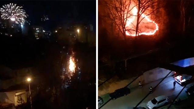 В Новый год в России горели леса из-за фейерверков и захватывали заложников